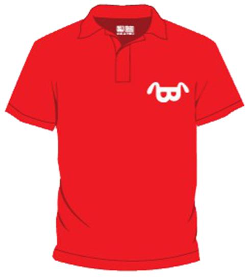 Áo phông công ty BRV03